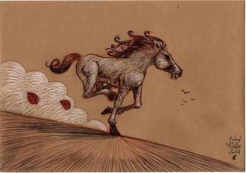 dessins,gérard collas